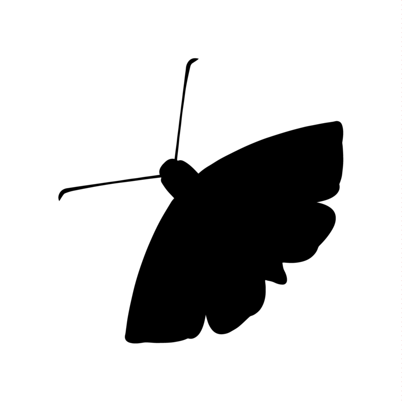Moth Radio Hour logo, moth silhouette