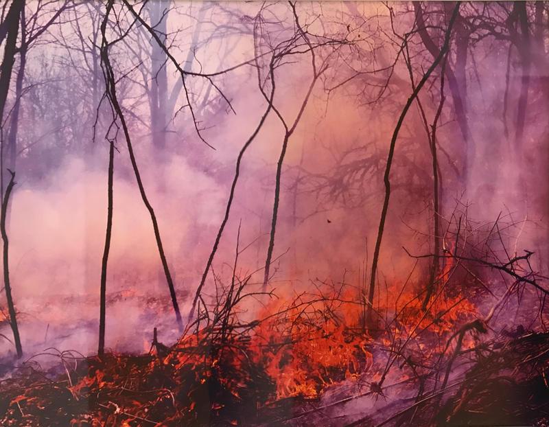 """Burn"" by Eric Craddock"