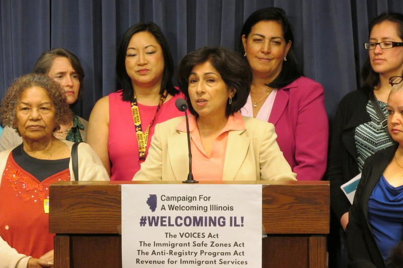 State Rep. Lisa Hernandez flanked by other Illinois House lawmakers and advocates, addresses the media on May 22