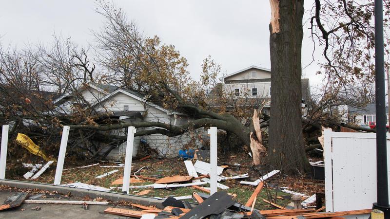 tree limb on garage and swingset