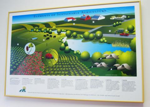 "A poster meant to teach the general public about sustainable ag hangs in Rob Myers' office. ""Everyone can mentally think of a farm scene: the cows out in the pasture, and the crops growing out in the field and a farmer in their pickup but when we talk about sustainability, it's a step beyond that,"" Myers said."