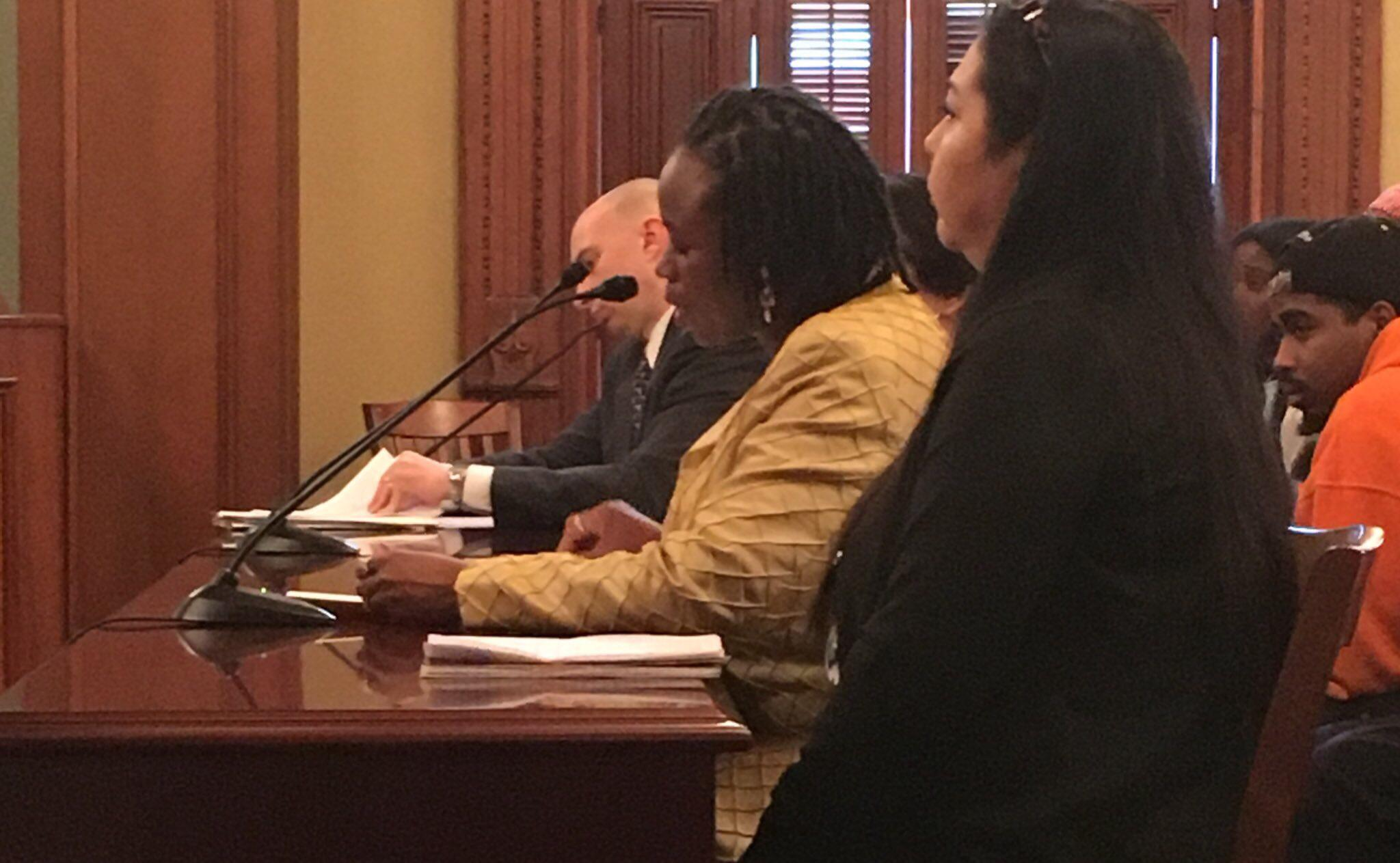 illinois issues the trouble temp work npr illinois carol ammons in yellow during a labor committee hearing
