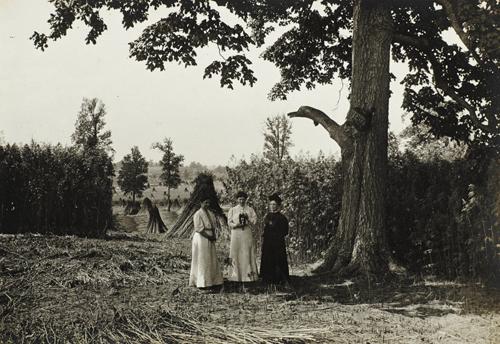 Women in Hemp field taking photograph