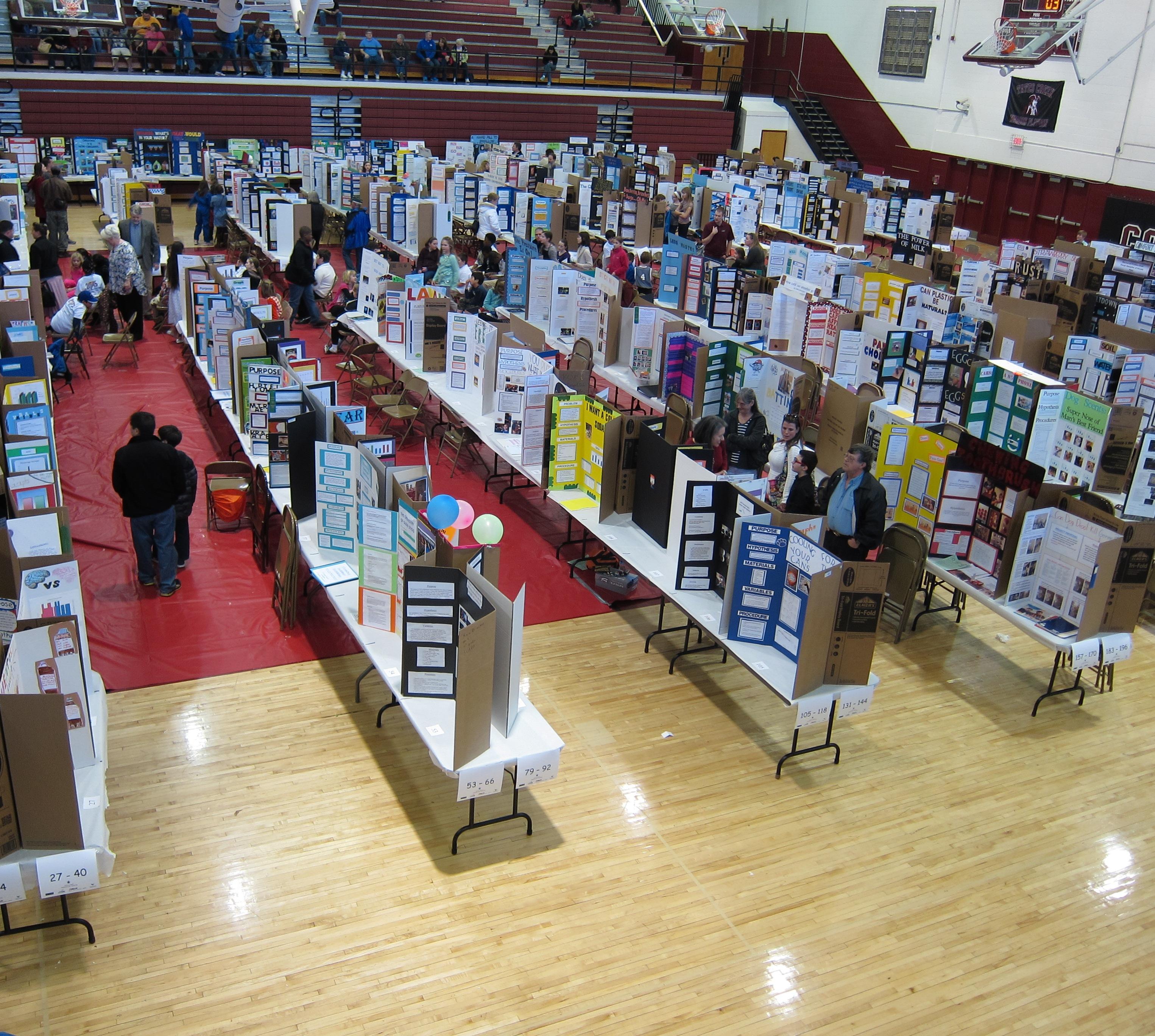 report on science fair held in school