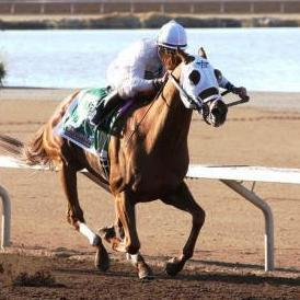 Endorsement, winner of the 2010 Sunland Derby