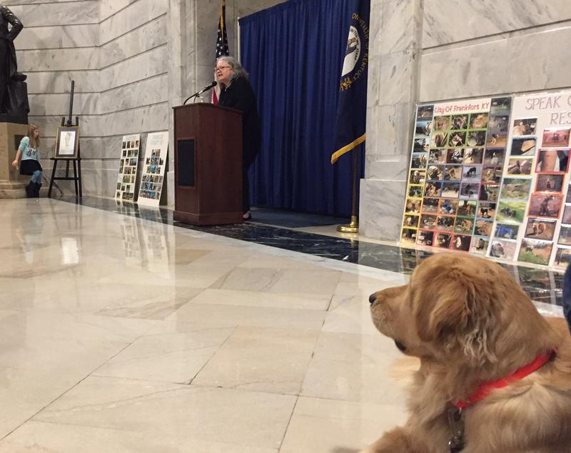 """Chester"" watches as Kathryn Callahan with the Humane Society of the United States delivers remarks at the 2017 Humane Rally Day"