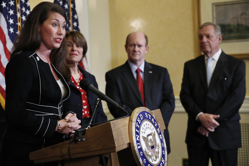Kentucky Secretary of State Alison Grimes, left, accompanied by, from second from left, Sen. Amy Klobuchar, D-Minn., Sen. Chris Coons, D-Del., and Senate Minority Whip Richard Durbin of Ill., speaks during a news conference on Capitol Hill in Washington.