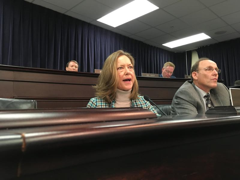 "Kentucky Democratic state Rep. Kelly Flood casts a ""no"" vote on a bill that would pay residential solar power generators less for their excess energy on Thursday, Feb. 8, 2018, in Frankfort, Ky."