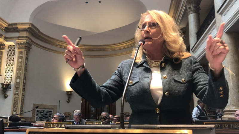 Sen. Robin Webb, D-Grayson, argues against budget and tax bill veto overrides on the Senate floor on April 13, 2018.