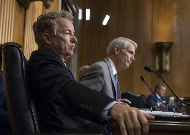 Sen. Rand Paul, R-Ky., left, and Sen. Rob Portman, R-Ohio, pose questions to witnesses as the Senate Committee on Foreign Relations holds a hearing on relations between the U.S. and Russia, on Capitol Hill in Washington, Tuesday, Aug. 21, 2018.