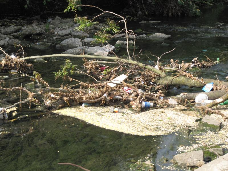 Trash and debris in the creek