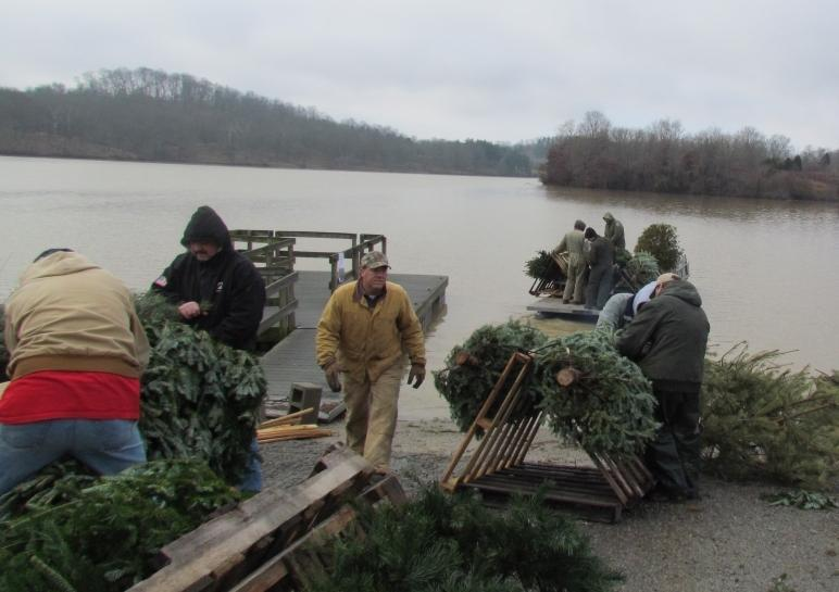 Fish need your trees after the holidays wuky for Ky fish and wildlife jobs