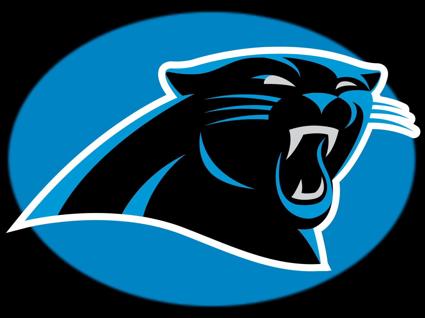 Carolina Panthers are officially for sale.