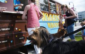 Dogs wait in line for treats from the Waggin' Wagon.