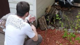 Photo: Magomed Imakaev planted a medlar tree in his back yard outside of Boston to remind him of his native Chechnya.