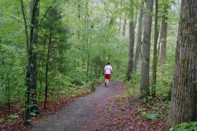 A runner on Chapel Hill's Battle Branch Trail.