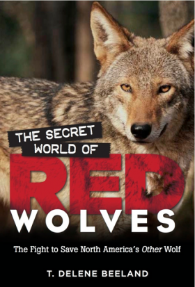 The Secret World of Red Wolves by Delene Beeland.