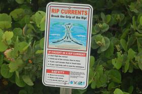 Break the Grip of the Rip sign