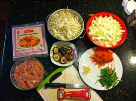 Ingredients for Vijay's spring rolls recipe.