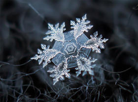 A close-up picture of a snowflake