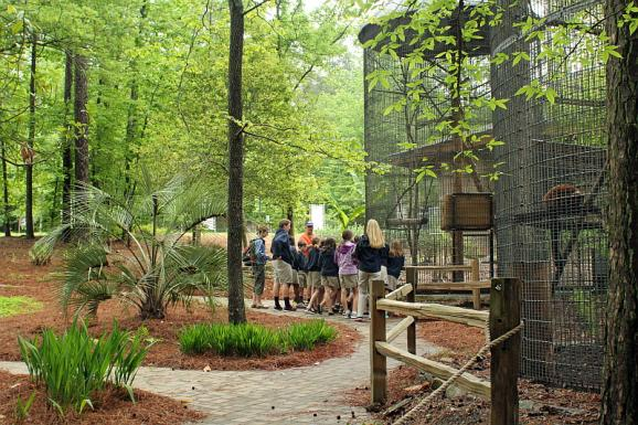 A school group visits the Duke Lemur Center.