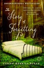 Book Cover: The Story of Forgetting
