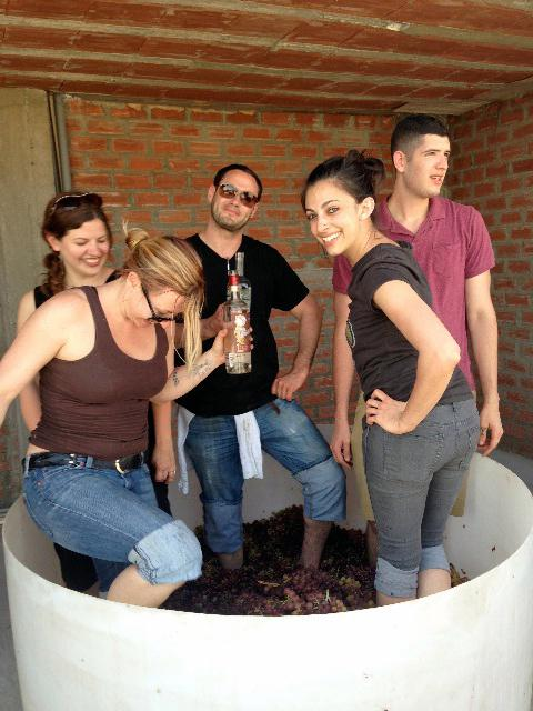 After the grapes were picked, they had to be crushed by foot. Anton is in the center, back.