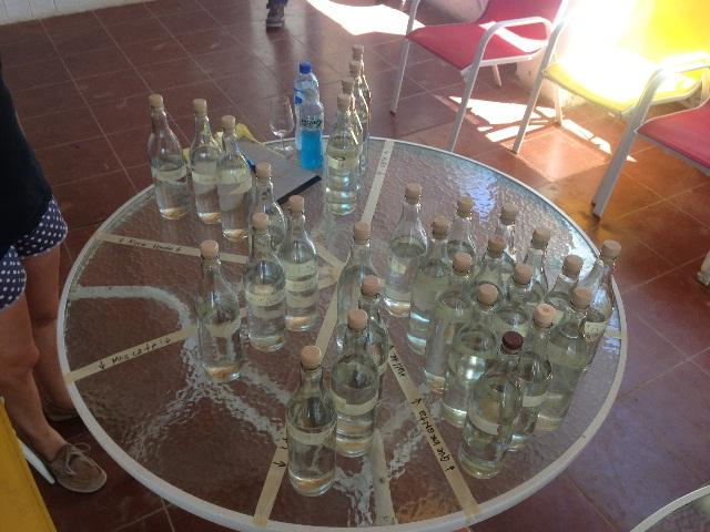 In Peru, there are hundreds of pisco varieties.