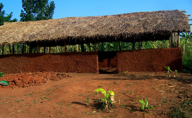 A grafting hut in Uganda used for the apple trees.