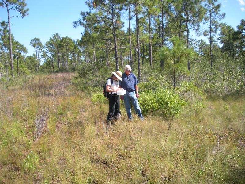 Richard LeBlond (retired) and Misty Buchanan of the Natural Heritage Program, an office in state government that helps identify rare/endangered plants and animals. The picture was taken during the initial survey of the property.