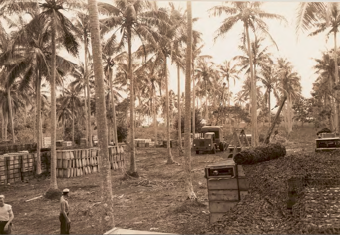 Members of the 1st Naval Constuction Battalion on Bora Bora during World War II.