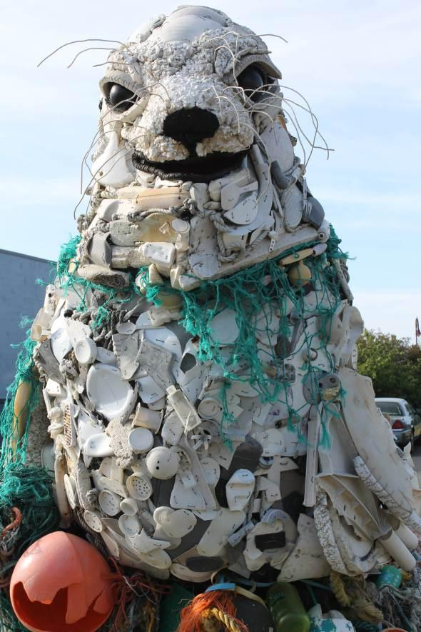 Lidia the Seal, made of plastic debris collected from the west coast. She is part of a project to make people aware of the amount of waste in our oceans.