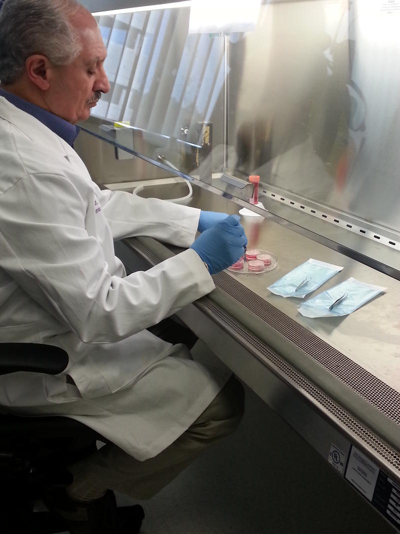 Khalil Bilar works in a laboratory at the Wake Forest Institute for Regenerative Medicine.