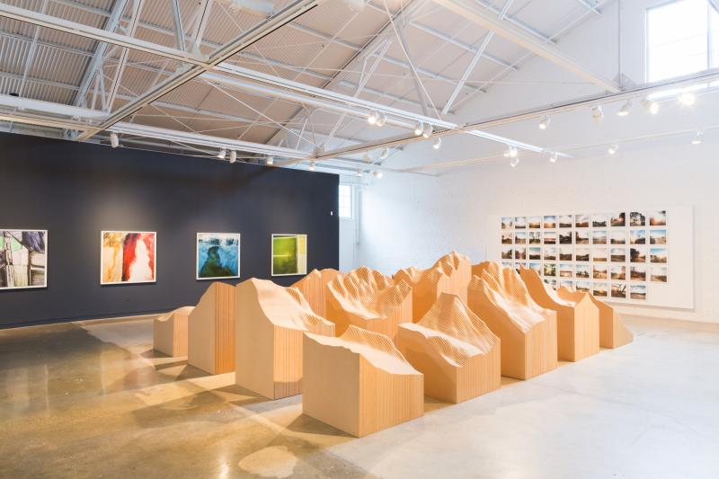 """Surveying the Terrain"" at CAM Raleigh. Artists: Maya Lin, David Maisel, Trevor Paglan"