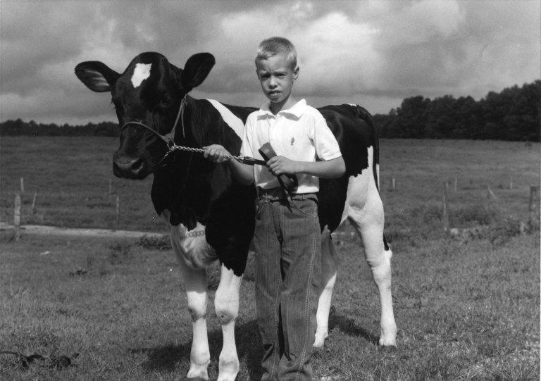 A picture of a boy and a steer.