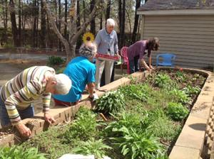 A picture of senior citizens gardening.