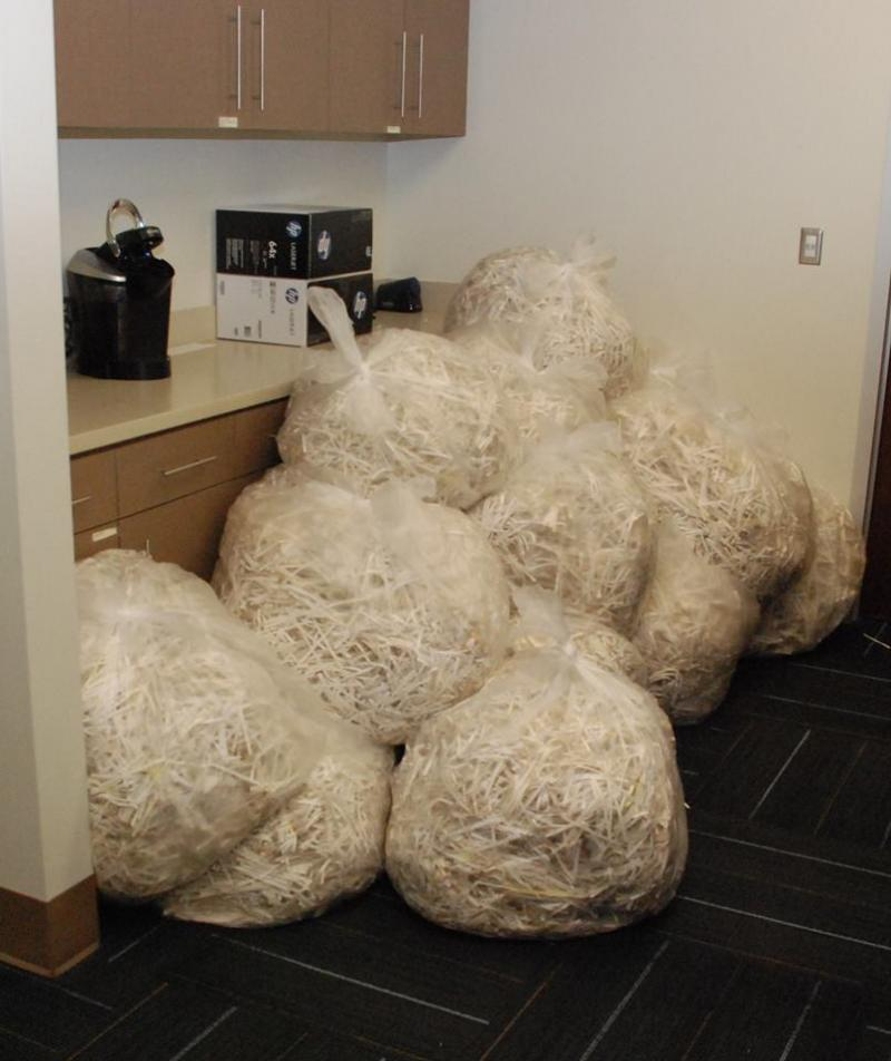 Remains of the records, shred this week by the Durham County Clerk of Courts.