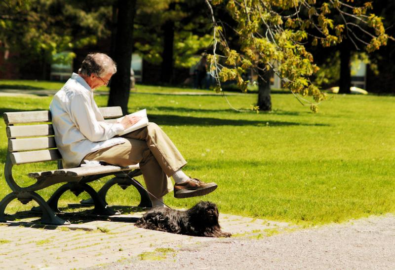 Man sitting on a park bench