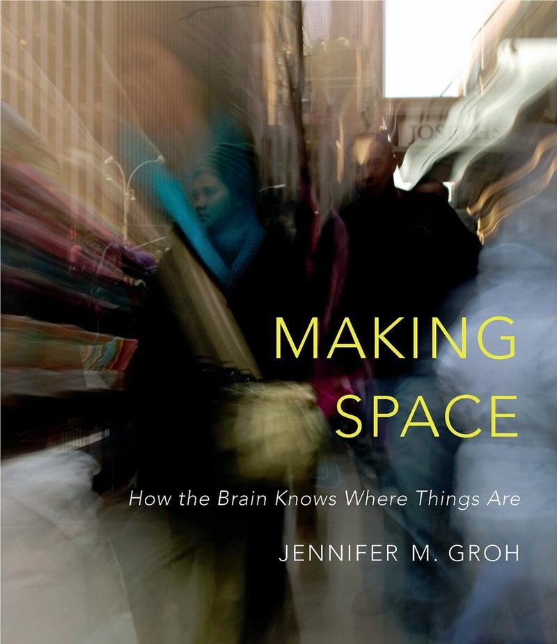 "Duke Professor Jennifer Groh's new book ""Making Space"" takes a look at our brain's ability to handle spatial relationships."