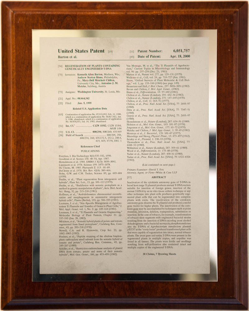 Mary-Dell's patent for the regeneration of plants containing genetically-engineered T-DNA.