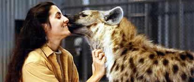 Professor of Evolutionary Anthropology Christine Drea upclose with a hyena
