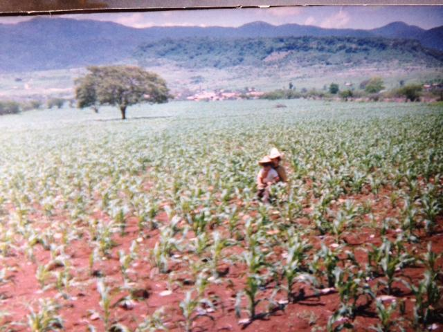 Image of Ramon Zepeda, who sits in a corn field in Mexico with his brother. They were helping their father by putting fertilizer out.