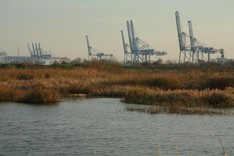 Coal-burning factories next to a marsh