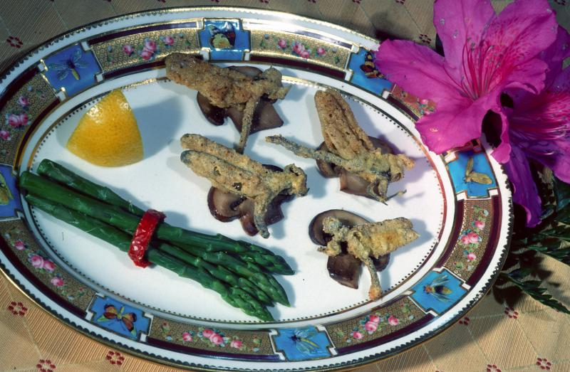 An hors d'ouevres plate with odonates, an order of carniverous insects like dragonflies
