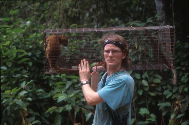 Kays carrying a kinkajou in a trap in 1996. For his zoology doctorate, he researched the diet of the kinkajou.