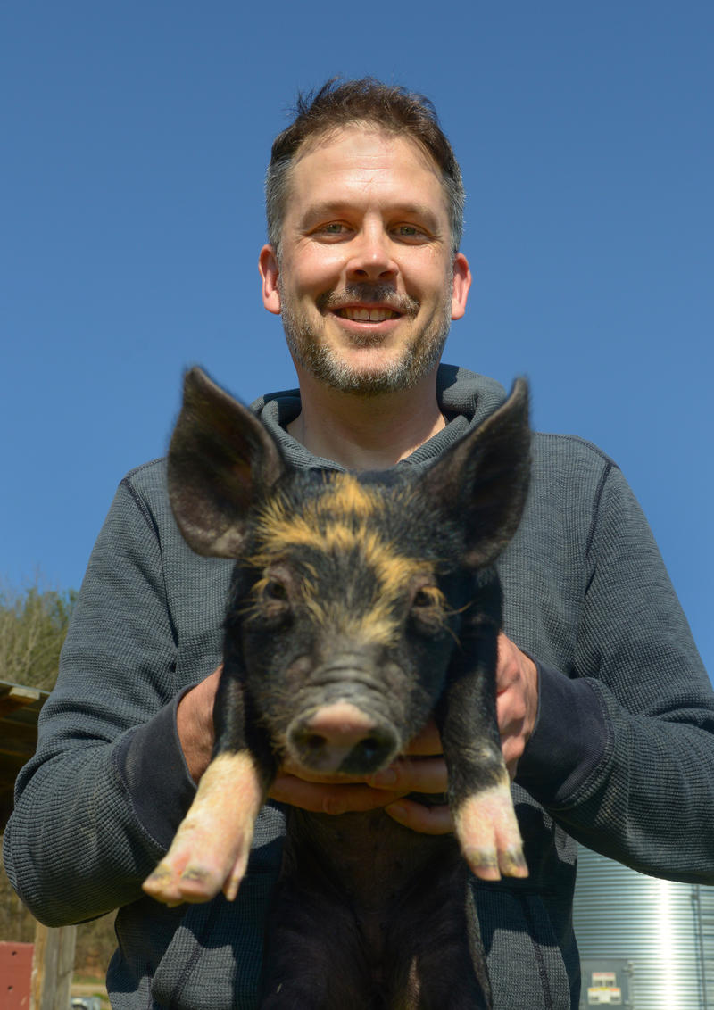 Mark Essig with a piglet at Warren Wilson College's farm near Asheville