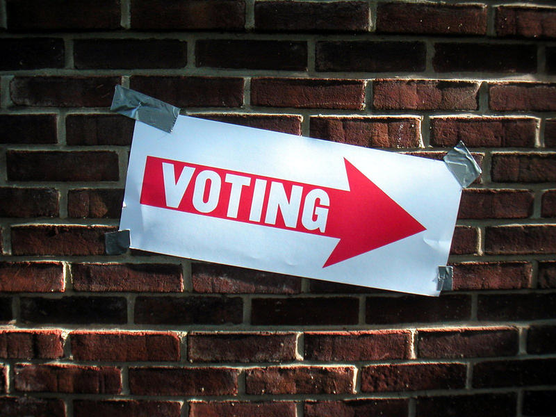 A picture of a voting sign.