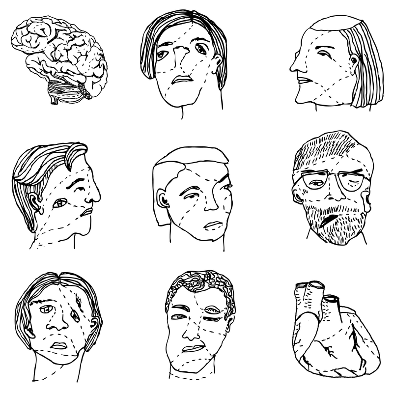 Drawing of faces and organs.