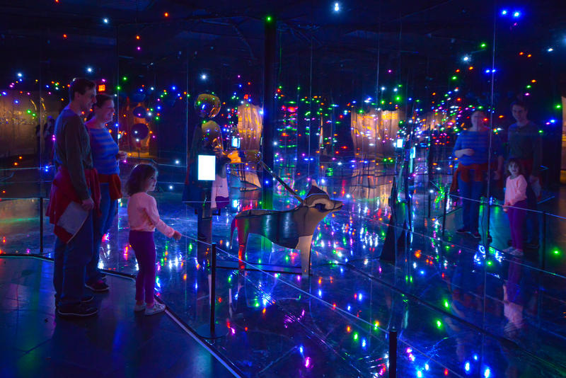 Three people peer at a light display at the North Carolina Museum of Natural Sciences representing the vastness of the body's microscopic universe.