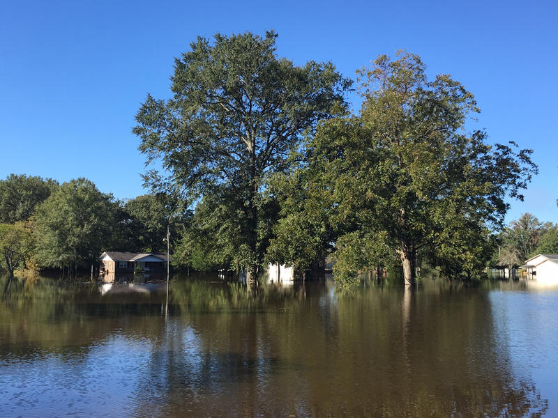 Flooded neighborhoods in Grifton near the Contentnea Creek on Thursday, October 13, 2016.